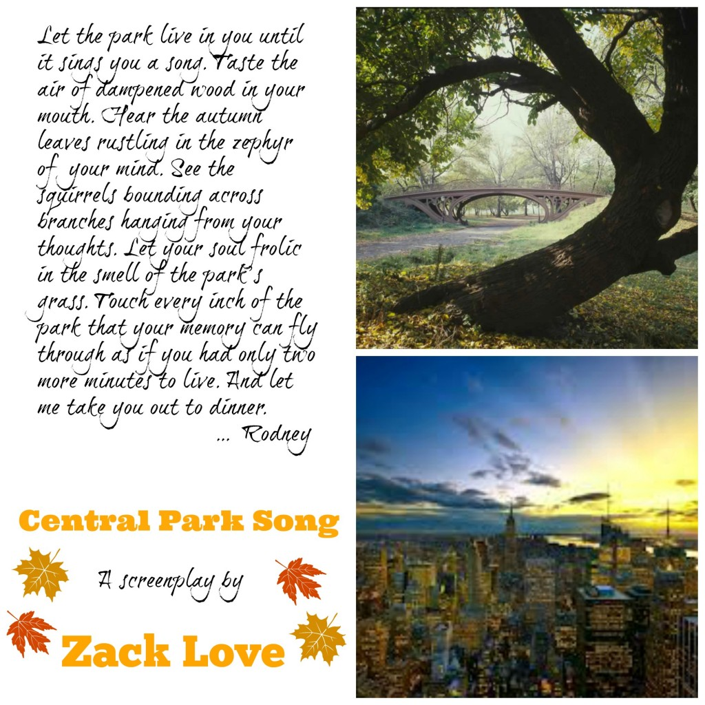 11 1024x1024 Central Park Song a screenplay by Zack Love